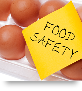 Section-FoodSafety-000017119878