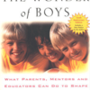 the-wonder-of-boys-by-michael-gurian