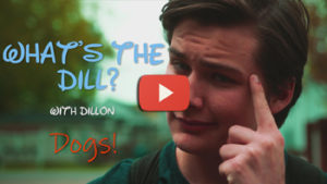 "Dogs in School – ""What's the Dill?"""