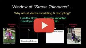 Trauma-Impacted Brains & the Window of Stress Tolerance – Jim Sporleder